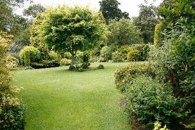 Entrepreneur de jardin votre service anderlecht for Entrepreneur jardin