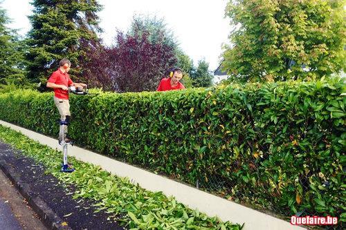 Entretien jardin brabant wallon limal for Recherche jardinier pour entretien jardin