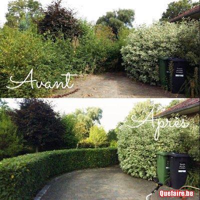 Entretien parcs jardins weltjens meeffe for Annonce entretien jardin