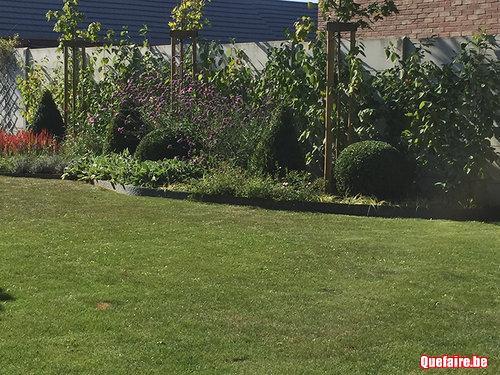 Super jardinier bruxelles et environs devis woluwe for Jardinier bruxelles