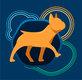 Promenade, Pension et Éducation pour chiens