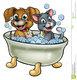 Toilettage  chiens et chats à domicile