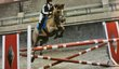 Cours équitation obstacle-dressage
