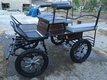 Calèche 4 roues pour 1 ou 2 poneys freinée