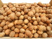 Mes  belles noix de mon jardin bio 2,50 euros du...