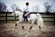 Cours de dressage / équitation