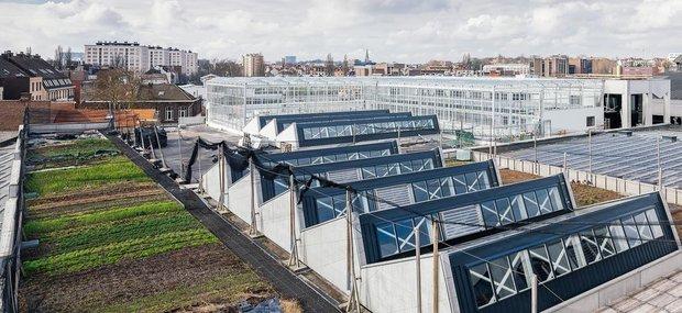 Ontspanning Bezoek  Stadsboerderij Abattoir  grootste dakboerderij Europa